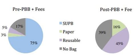 Plastic Bags Should Be Banned Band 7 IELTS Essay Sample